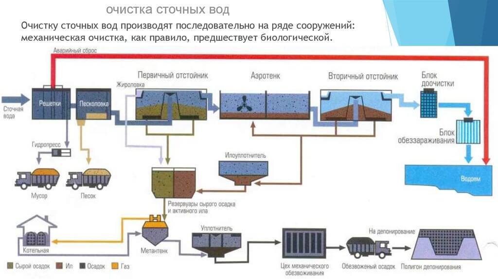 utilizacija osadkov hoz bytovyh stochnyh vod 2 Утилизация осадков хозяйственно бытовых сточныхвод